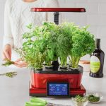 Grow Your Own Vegetables with AeroGarden Harvest Touch - It's Easy and Automatic