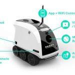 Anthouse Pet Companion Robot