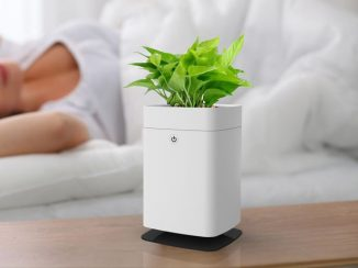 Modern ANTI-Mosquito Pot Kills Mosquitoes and Decorates The Room