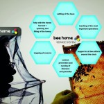 Bee Home : Modern Beehive for Urban Beekeeping
