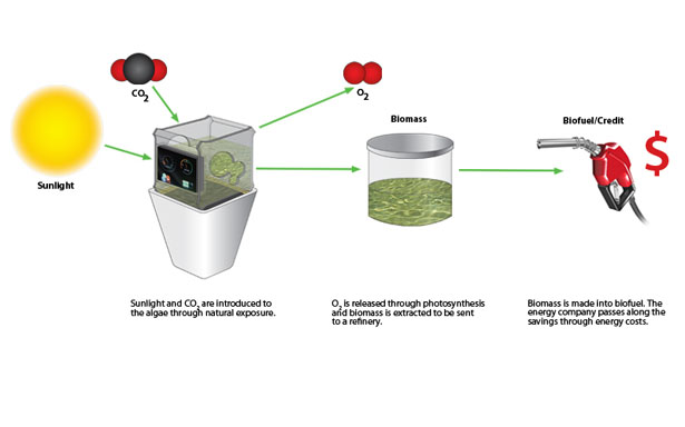 Bio-Grow Photobioreactor for The Cultivation of Algae