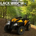 Black Widow 4x4 Quad For Adventurers