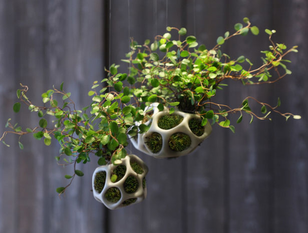 Cella Urban Planter Pods Bring You Closer to Nature