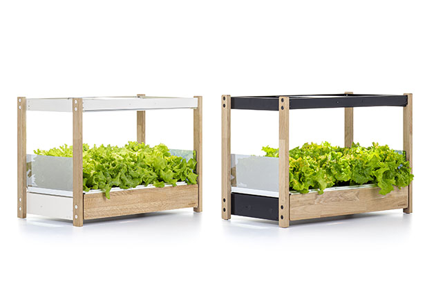 Click & Grow 25 Self-Growing Garden Provides Healthy Food and a Touch of Nature in Your Home