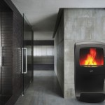 Cobra Wood Stove by Jerome Olivet