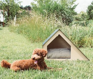 Deauville Pet House Design with Angular Structures