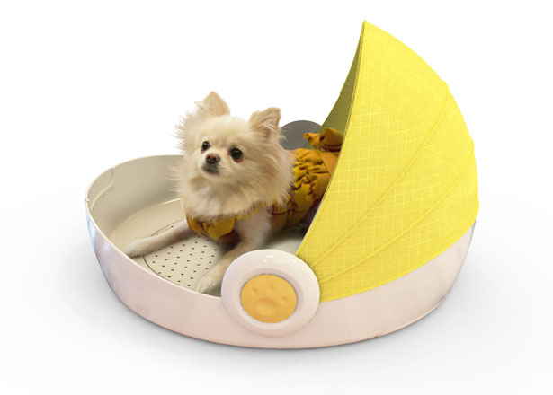 Dog House Dryer by Lucy Jung