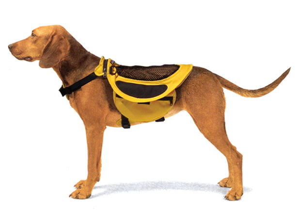 Dog Pack : Breathable Mesh Backpack That Doubles As A Raincoat for Your Dog