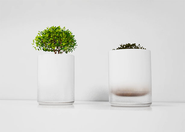 Floating Pot by Diach seo and Dahyun