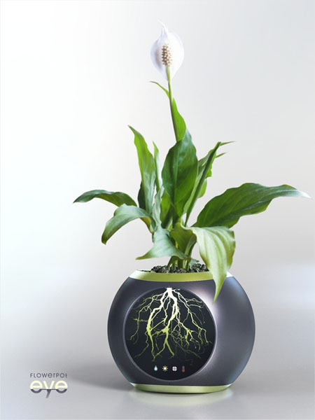 Flowerpot EYE Allows You To See the Root System Of A Plant