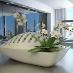 Fluidity : A Dish Drying Rack and Plant Pot in One for Small Kitchen