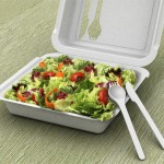 Green Box : Takeaway Box With Integrated Eating Utensils