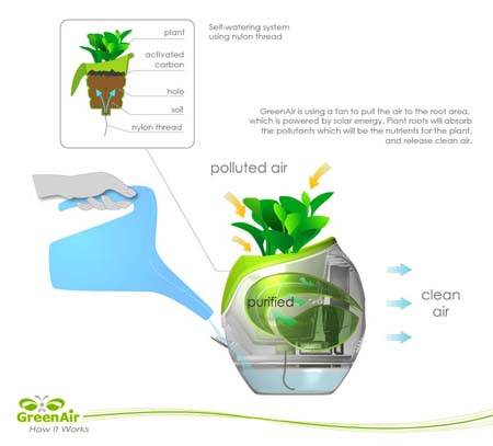 green air plant pot natural air purifier