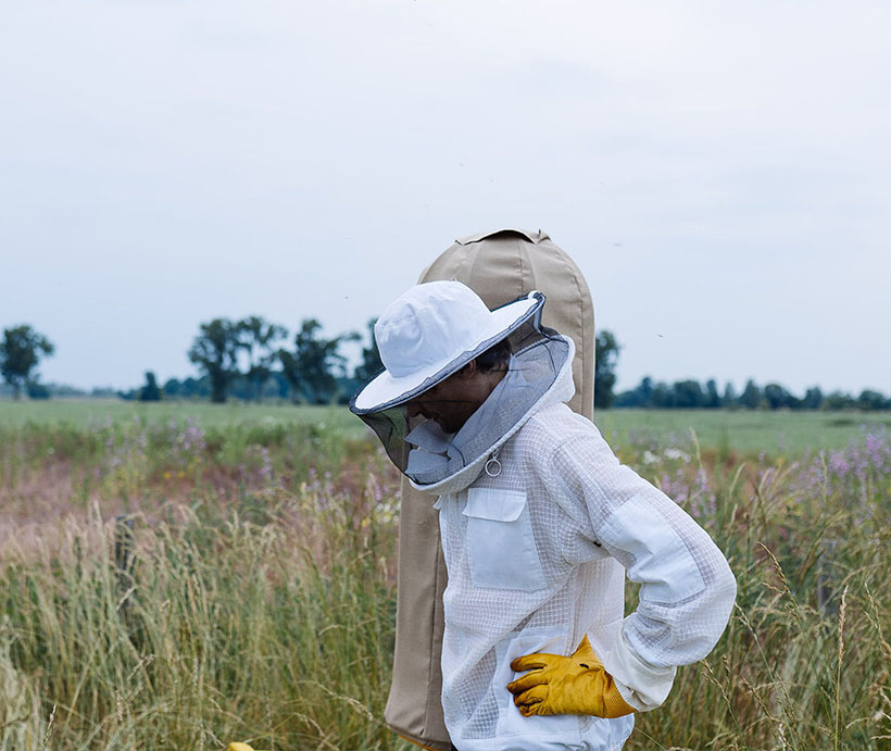 HIIVE - a Safe and Healthy Home for Bees