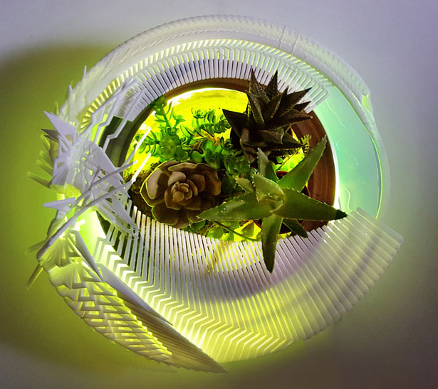 HydraLight Terrarium by Margot Krasojevic