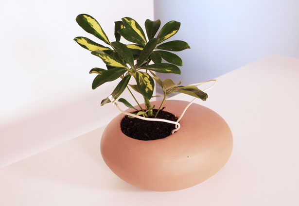 Koishi Planter Pot Concept by Noel Zahra
