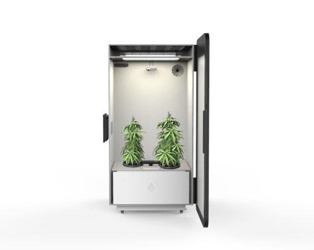 Leaf Plug and Play Cannabis Growing System