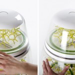 Lepsis Terrarium for Growing Your Food … Bugs!