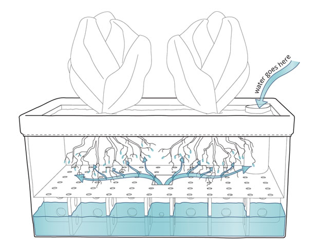 Let's Patch Self Watering Patch Planter for Herbs and Greens