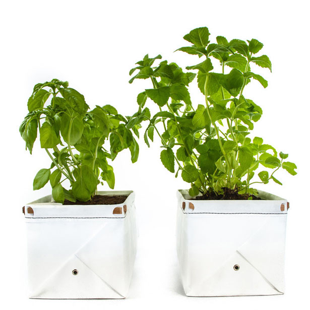 Let's Patch : Self Watering Patch Planter for Herbs and Greens