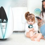 Lotus Air Purifier with Portable Air Balls for Some Specific Tasks