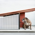 MDK9 Modern Dog House by RAH:Design