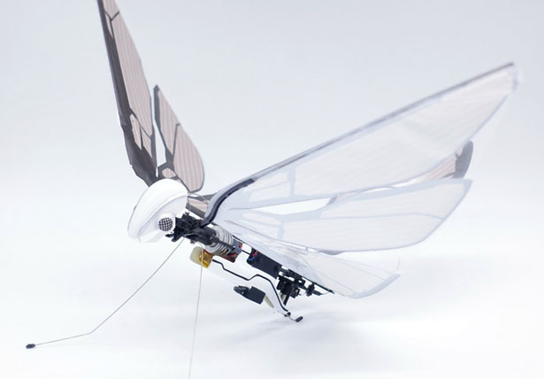 Metafly Biomimetic Controllable Creature Takes Flight The Way Animals in Nature Do