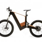Mosquito E-Bike with Removable Pole and Ergonomic Design