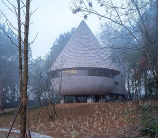 Mushroom Wooden House In The Middle of Pine Forest