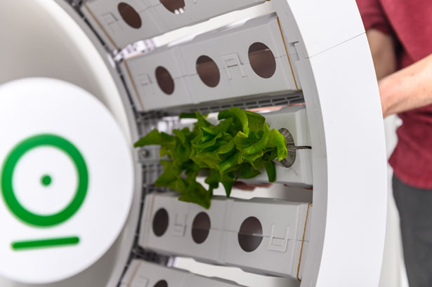 OGarden Smart Grow Indoor Garden