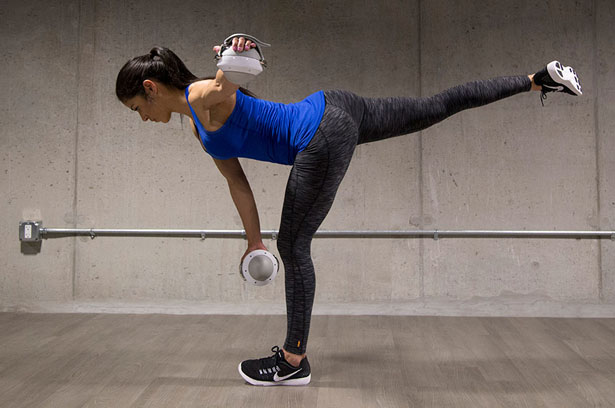 OmniBall Rolling Weights for Total Body Workout