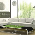 Oxygen of Green : Natural Air Purifier Table for Your Living Room
