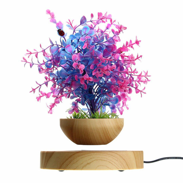 Pathonor LED Levitating Air Bonsai Pot