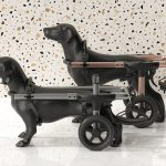 Petdali: Modern Dog Wheelchair for Outdoor Use