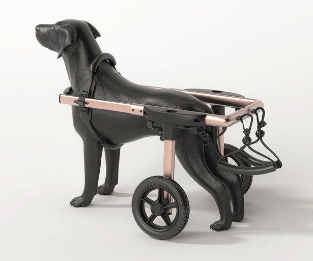 PetDali: Modern Dog Wheelchair for Outdoor Use by HS2 Studio