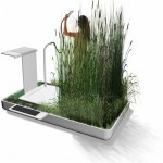 Mini Eco System Phyto Purification Bathroom