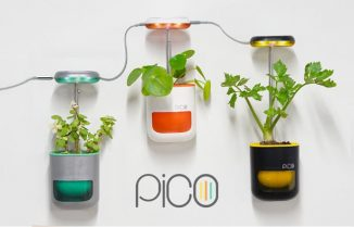 Pico – Tiny Smart Garden That Fits in Your Palm