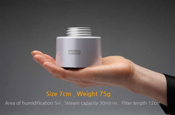 Portable Amazing Humidifier