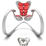 Ruby Rocking Chair Design was Inspired by Super Human Body