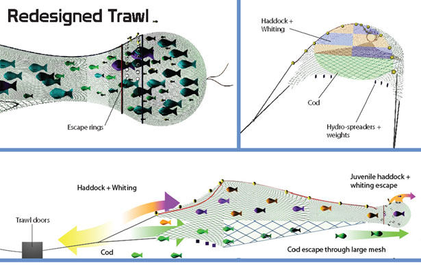 SafetyNet System Innovative Trawling Net System