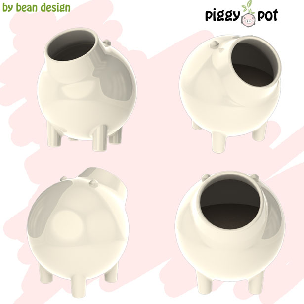 the piggy pot
