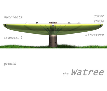The Watree Will Collect The Rain Water and Used During The Summer