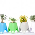 TriPot I Self Watering Plant Pot Review