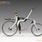 Zweistil Bike Design with Two Riding Options
